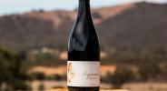 Wines-syrah10