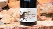 black_mares-2015 copy
