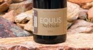 equus_nebbiolo-2015 copy